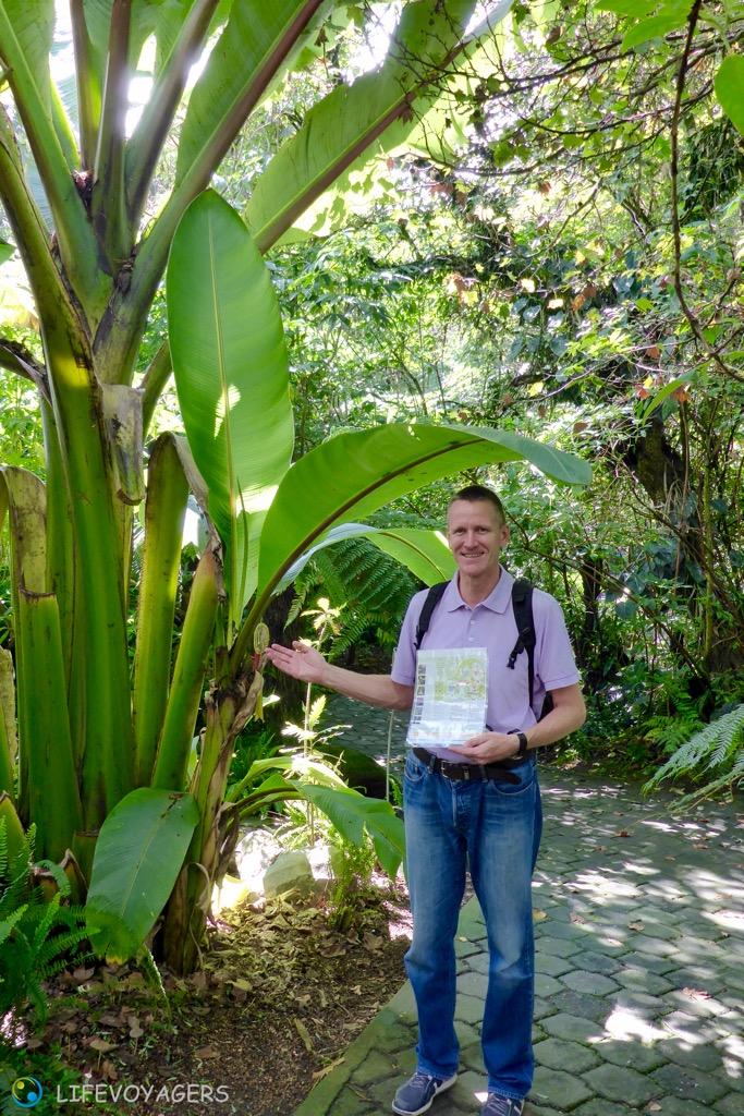 AZZ_Jardin Botanico II Schaps