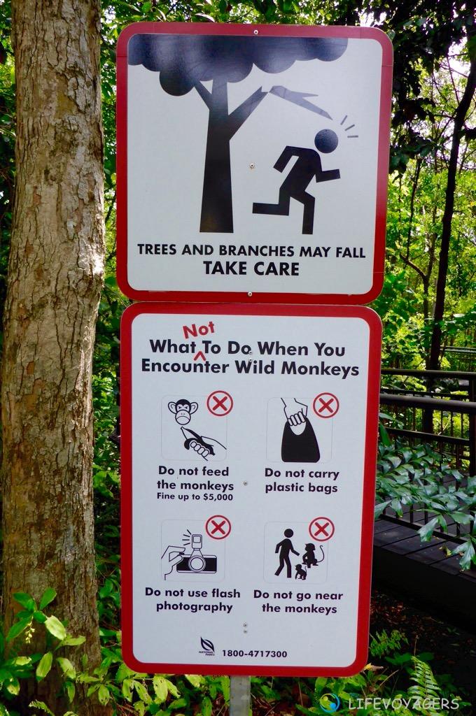 Affenwarnung