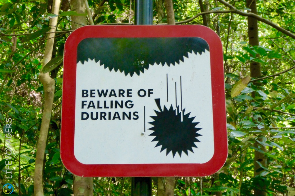 Durianwarnung