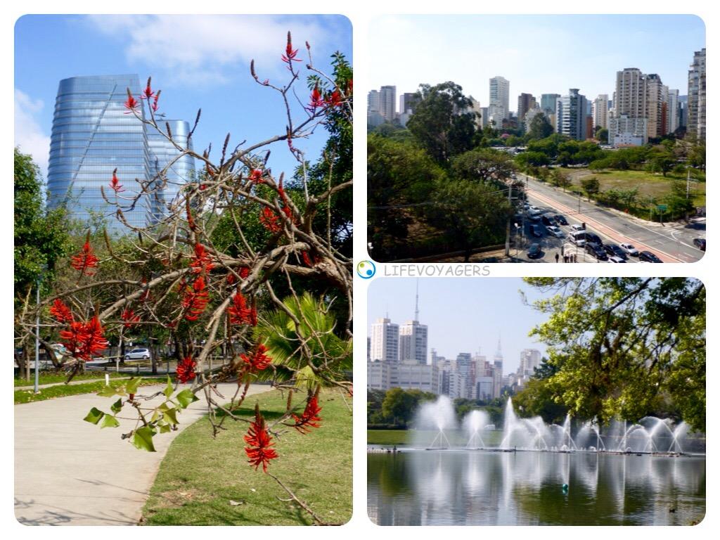 Grünes Sao Paulo2