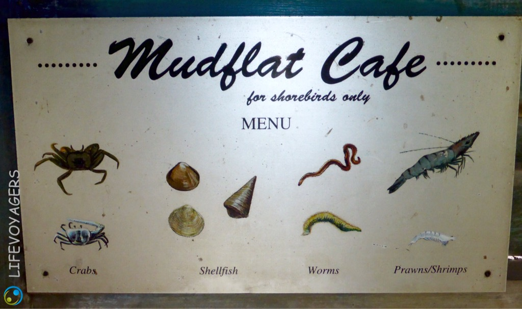 Mudflat Cafe