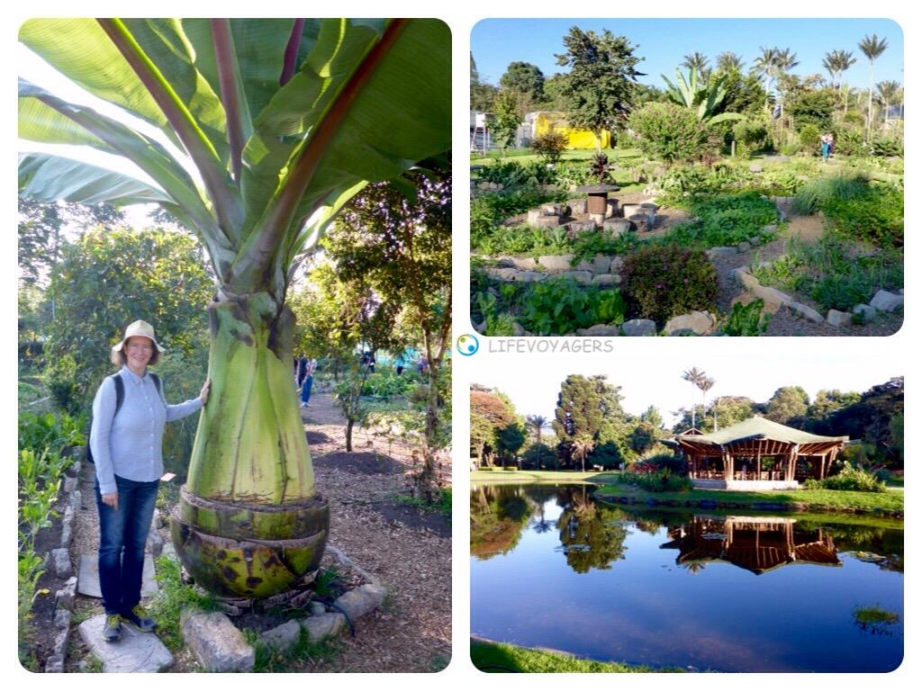 10-bogota-jardin-botanico