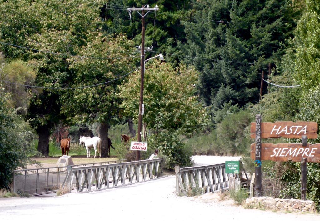 lg3_bruecke-pferde